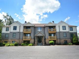 Cheerful & Charming 2 Bedroom Condominium w/ Communuity Indoor Pool!, McHenry