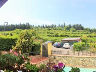 Villa dei Sogni 2 bedrooms and swimming pool, Greve in Chianti