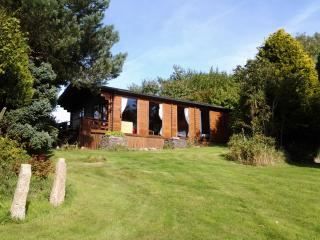 Tudor Lodge with BBQ cabin, Liskeard