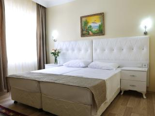 2 BR family apartment in the heart of Old Istanbul