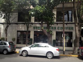 Charming Boutique Suite-5 in Condesa