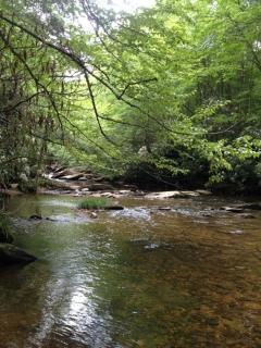 Nearby Stream