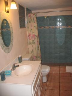 Larhe bathroom with beautiful tiles and fixtures