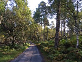 West Lodge Strathconon Scottish Highlands