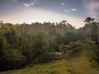 135ha Private Rainforest - Retreat Into Nature, Puerto Viejo de Talamanca
