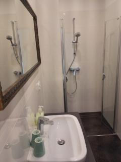 Spacious private bath with shower