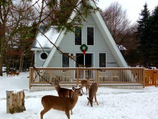 Pocono Dwarf Cottage, Albrightsville