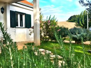 Vacation house Lavanda, Brela