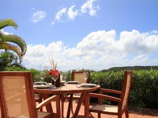 Villa D'Or St Barts Rental Villa D'Or, Gustavia