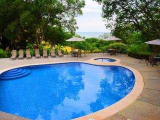 Luxury Condo with great views, very quite, lots of nature, Tarcoles