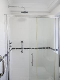 Walk-in shower with overhead jet.
