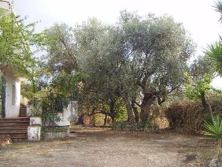 B & B VILLA DELL'ULIVO, San Cataldo