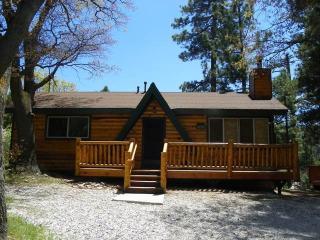Moonridge Cabin With A View, Big Bear Lake