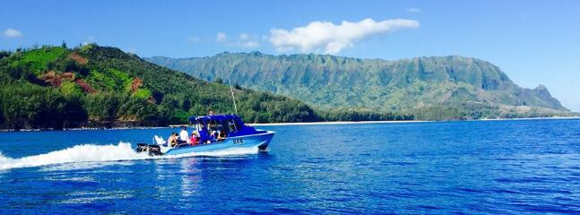 Book a boat tour with Na Pali Coast Hanalei Tours