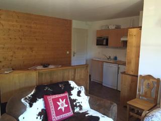 EDELWEISS D23 Appartement raffiné, pied des pistes, Flumet