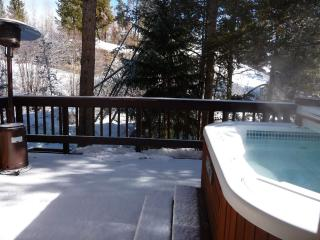 Fabulous Snow! Ski Special! and HOT TUB to enjoy