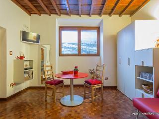 Super Tuscan/ Renovated Ponte Vecchio Suite