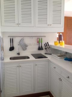 Allamanda 1225 kitchen is fully furnished with induction fire