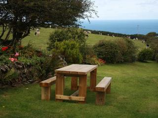 Big Pol Character Cottage Boscastle With Sea Views