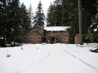 03MBH Large Cabin near Mt. Baker with River Access, Glacier