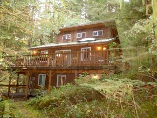 06SL Mountain View Cabin with a Hot Tub and WiFi, Lakewood  Snohomish County