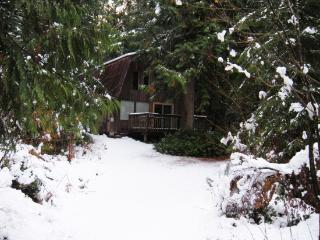 08GS Pet Friendly Cabin with a Sauna and WiFi, Glacier