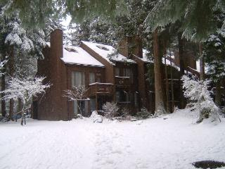 20SW Snowater Condo at Mt. Baker has GREAT Amenities, Glacier