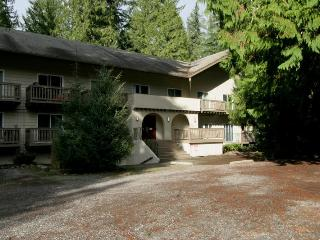 56SLL Budget Priced Condo near Mt. Baker, Glacier