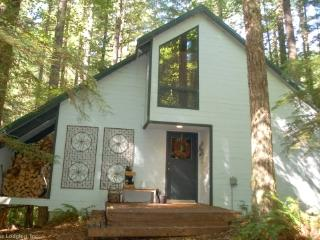 48SL Pet Friendly Cabin near Mt. Baker has WiFi, Glacier