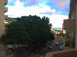 Madeira Funchal Centre Flat