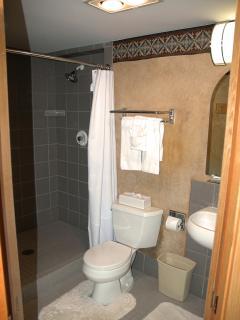 Master en suite bathroom with shower.