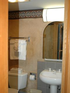 Second bathroom on main level with shower.