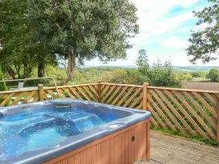 3 DARTMOOR LODGE, pet friendly, country holiday cottage, with hot tub in