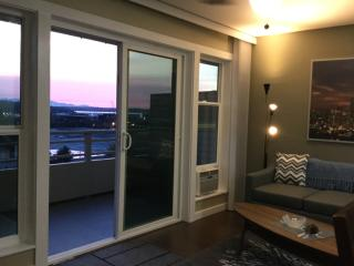 1Br/1bth Executive Suites Close to Seatac Airport, Renton