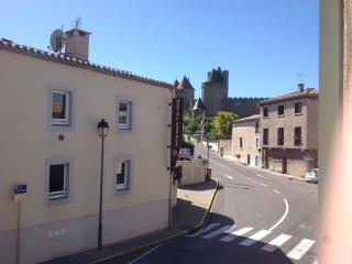 Carcassonne Cite in the background- a five minute walk from the house.