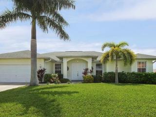Villa Palm Tree