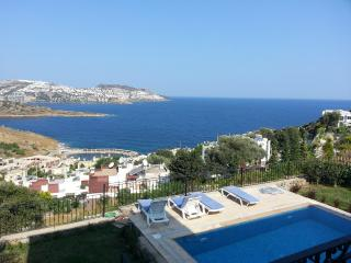 Göltürkbükü Holiday Villa BL24026484376, Golturkbuku