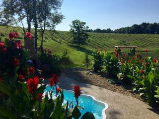 Hocking Hills Luxury Cabins - Pools Open ALL year, Logan