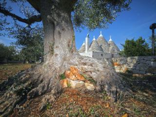 Trulli Foggia dell'Albero, Castellana Grotte