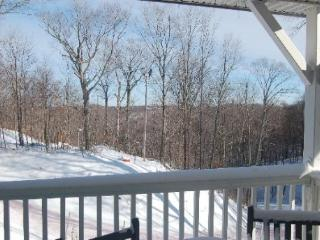 == February 10-17 == Holiday week == Luxury resort == ski lift at door