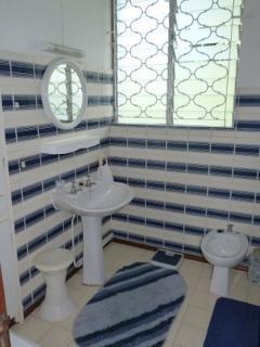 Salle de bain avec douche, lavabo et bidet