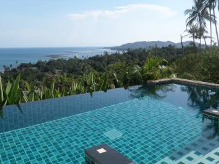 private pool 1 bedroom apartment with sea view