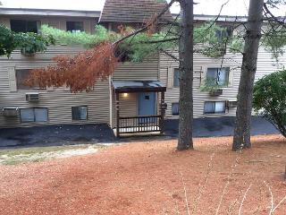 Village at Winnipesaukee Condo (MCC935Bf), Laconia