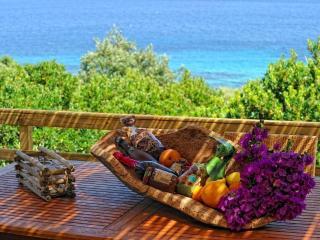 Bergerie en pierre 5*****  vue mer Corse