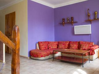 Loft 4 pièces mezzanine Centre Ville 90m²