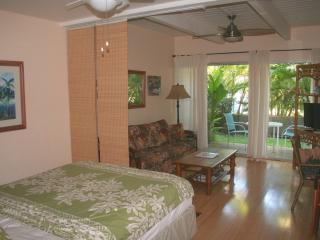 Clean, Quiet, Comfortable .... At a Great Rate !!!, Kihei