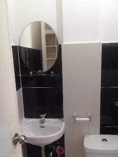 Mirror with hand basin