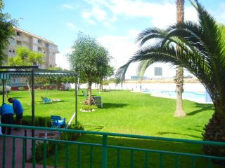 One  bedroom  apartment, Torrevieja