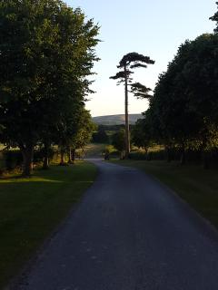 Front drive of Farm