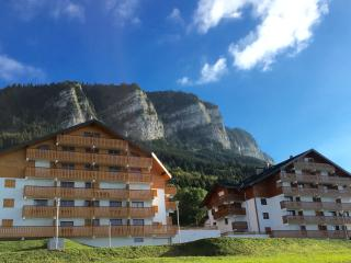 Brand new duplex apartment on the slopes, Thollon-les-Mémises